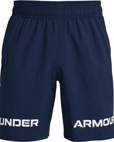 Pánske šortky Under Armour
