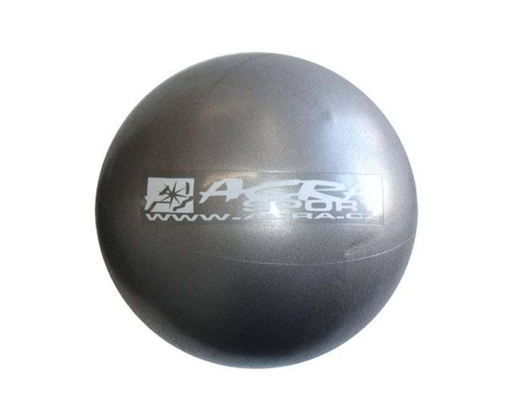 Acra ACRA Míč OVERBALL 30 cm, stříbrný