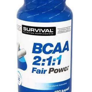 BCAA 2:1:1 Fair Power 150tbl.