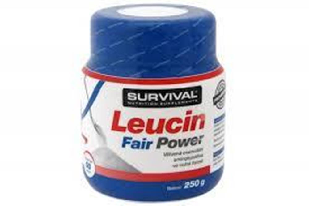 Survival Survival Leucin Fairing Power 250 g 250g
